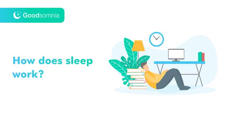 How does sleep work?